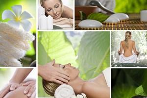 http://www.bio-cosmetics.ro/bio-cosmetics/eshop/0/3/5/2614-Ulei-de-susan-Pure-Element
